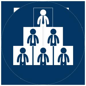 LSS Leadership Augmentation