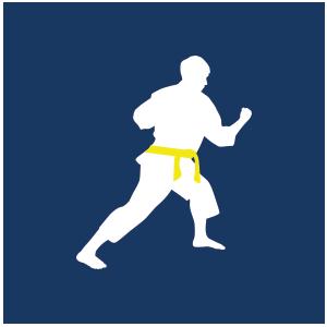 Yellow Belt Presentations